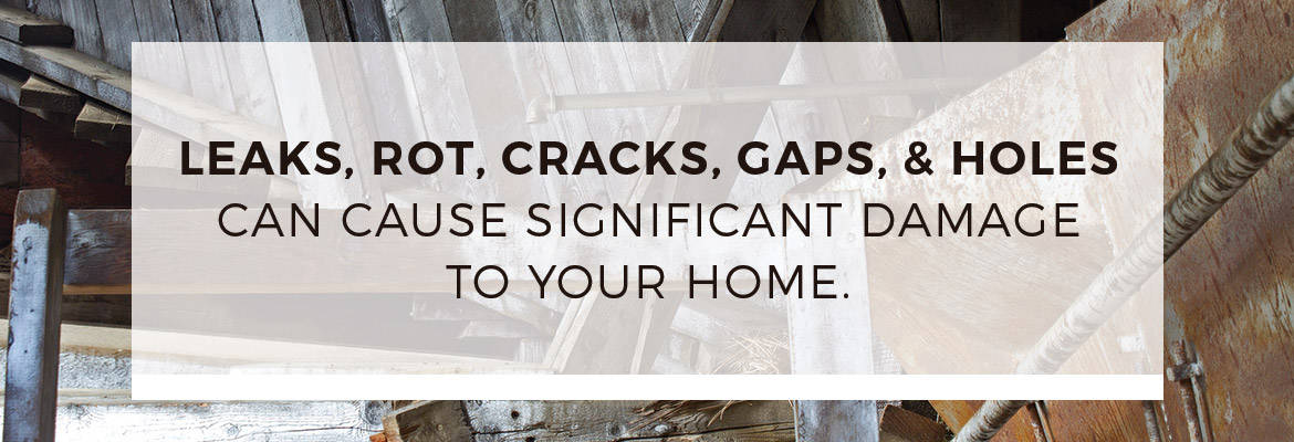 Leaks, rot, cracks, gaps and holes in roof inspections.