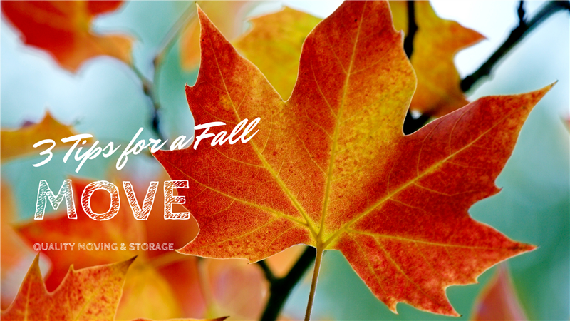 3 Tips for a Fall Move