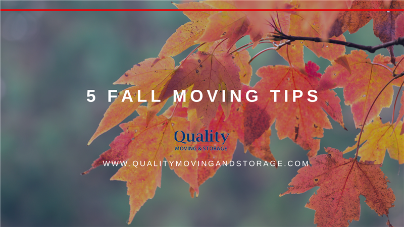 5 Fall Moving Tips