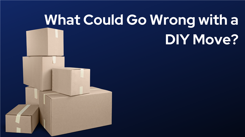 What Could Go Wrong with a DIY Move?