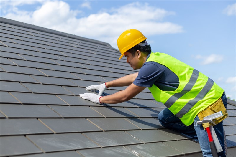 The Importance of Professional Roof Maintenance