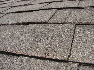 Exterior Home Protection Plan Keeps Your Northern Virginia Roof in Tip-Top Shape