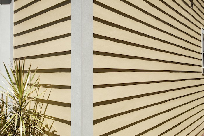 The corner of a home with yellow lap siding and white trim on the corner. There is a plant in the bottom left corner.